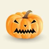 Halloween pumpkin_4 Fotografie Stock Libere da Diritti