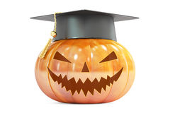 Halloween Pumpkin with academic cap, 3D rendering. On white background Royalty Free Stock Photos