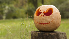 Halloween pumpkin angled Royalty Free Stock Photography