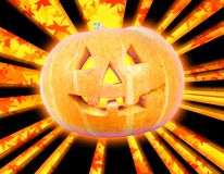 Halloween pumpkin autumn royalty free stock image