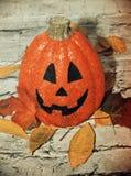 Halloween pumpkin. And autumn fall royalty free stock photos
