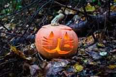 Halloween pumpkin in autumn forest. Selective focus Royalty Free Stock Image