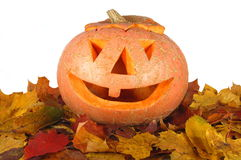 Halloween pumpkin on autumn leaves Stock Photography