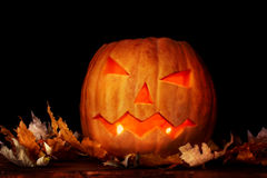 Halloween Pumpkin and autumn leaves Stock Photos