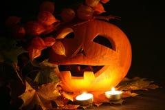 Black Halloween Stock Photography