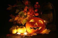 Black Halloween Stock Image