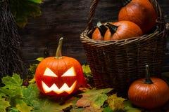 Halloween pumpkin in autumn leaves Stock Photos