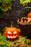 Halloween pumpkin in autumn leaves Royalty Free Stock Photo