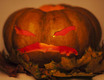 Halloween pumpkin with autumn yellow dry leafes, scary angry face close up Royalty Free Stock Photography