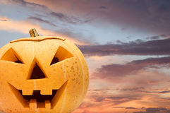 Halloween pumpkin background Royalty Free Stock Photo