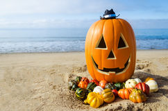 Free Halloween Pumpkin Background On The Beach Royalty Free Stock Image - 96901806