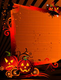 Halloween pumpkin banner Royalty Free Stock Images