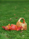 Halloween pumpkin with basket and leaves Stock Images