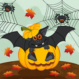 Halloween pumpkin bat Stock Image