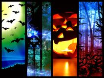 Halloween pumpkin bats and forest -l mystic background Royalty Free Stock Photography