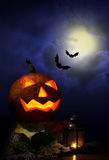 Halloween -  pumpkin and bats Royalty Free Stock Images