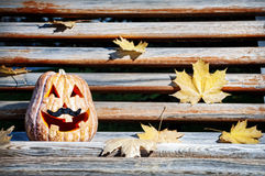 Halloween pumpkin on the bench Royalty Free Stock Photo
