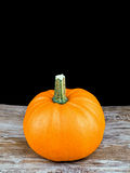 Halloween pumpkin on black Stock Images