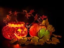 Halloween pumpkin on black background Stock Photography
