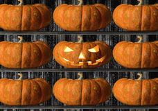 Halloween. Pumpkin on black background, concept religious feast Halloween royalty free stock photography