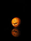 Halloween pumpkin on black background with reflection Stock Photography