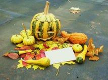 Halloween pumpkin blank card Stock Photos