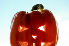 Halloween. The pumpkin with a carved face Stock Images