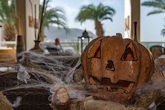 Halloween pumpkin carved on spider web Royalty Free Stock Photos