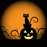 Halloween Pumpkin Cat. Halloween black cat and pumpkin Royalty Free Stock Image