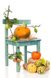 Halloween Pumpkin Chair With Spiders Stock Photography