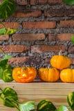 Halloween pumpkin Stock Photography