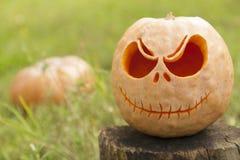Halloween pumpkin close up. Halloween pumpkin on a wooden stump surrounded by green grass Stock Photography