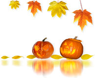 Halloween pumpkin collage Stock Image