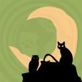 Halloween graphic resource background. Halloween pumpkin concept seasonal  holiday Stock Photography