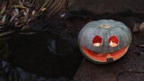Halloween pumpkin at the dark pool stock video