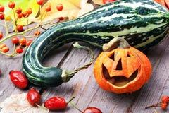 Halloween pumpkin decor. Stock Images