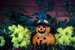 Halloween pumpkin decoration Stock Photos