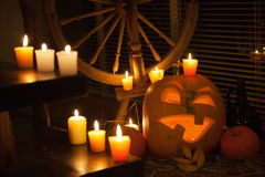 Halloween pumpkin display Stock Image