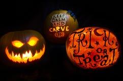 Free Halloween Pumpkin Display On A Black Background Stock Image - 110127621