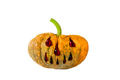 Halloween pumpkin with evil face Stock Images