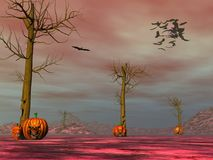 Halloween pumpkin faces - 3D render. Halloween pumpkin faces scenery by sunset - 3D render royalty free illustration