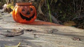 Halloween pumpkin on Fall background. Autumn mood. Halloween pumpkin on Fall background Autumn mood stock footage