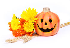 Halloween pumpkin and fall flowers Royalty Free Stock Photo
