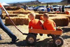 California. USA. October 2012. Halloween. The Pumpkin Festival. Two little boys, my mother is driving in a cart after a pumpkin fi royalty free stock image