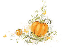 Halloween pumpkin and floral ornament Royalty Free Stock Image