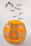 Halloween pumpkin and flying bats. Halloween pumpkin isolated on light background with flying bats Stock Image