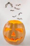 Halloween pumpkin and flying bats Stock Image