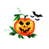 Halloween pumpkin with flying bats on white background. Watercolor illustration Stock Photos