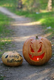 Halloween pumpkin on footpath in wood. Royalty Free Stock Images