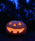 Halloween pumpkin. In the Forest Royalty Free Stock Photography